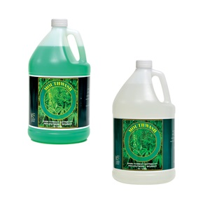 Entiere Mint Mouthwash