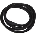 Windshield Weatherstrip Seal