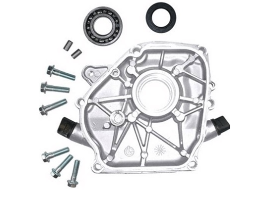 GX Series Crankcase Side Cover Assembly for GX 340-390