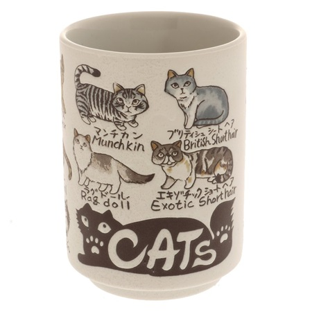 Teacup Favorite Cats