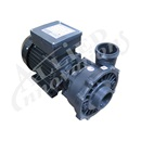PUMP:  2.5HP 240V 50HZ 2-SPEED 56 FRAME EXECUTIVE EURO